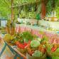 Viajes a Colombia | Restaurante en Santa Marta
