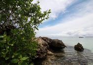 Playa en Islas del Rosario, situadas a 45 minutos de la bahía de Cartagena de Indias