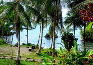 Costa de Nuquí
