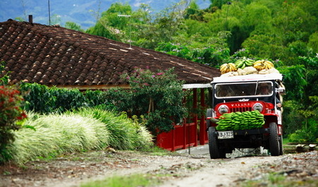 Viajes a Colombia   Eje Cafetero Willy Jeep
