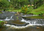 Paisaje con cascada en el Eje Cafetero de Colombia
