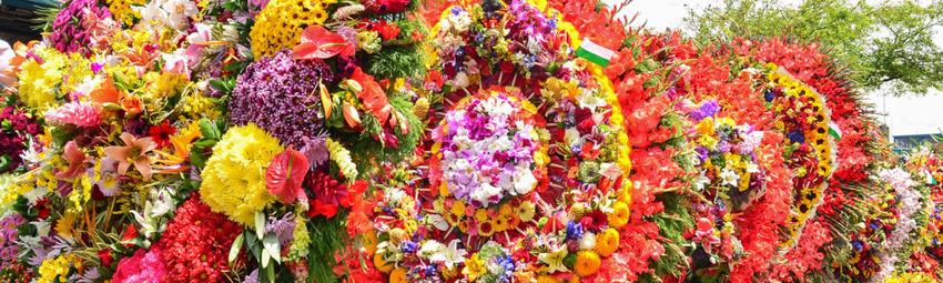 Desfile de las Flores Cortada Noticia.jpg