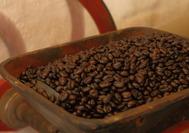 Granos de café recolectados en el Eje Cafetero